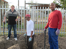 Greening-Nyanga-Programme-category